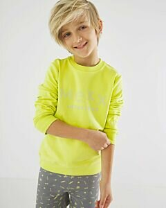 Sweater-lime