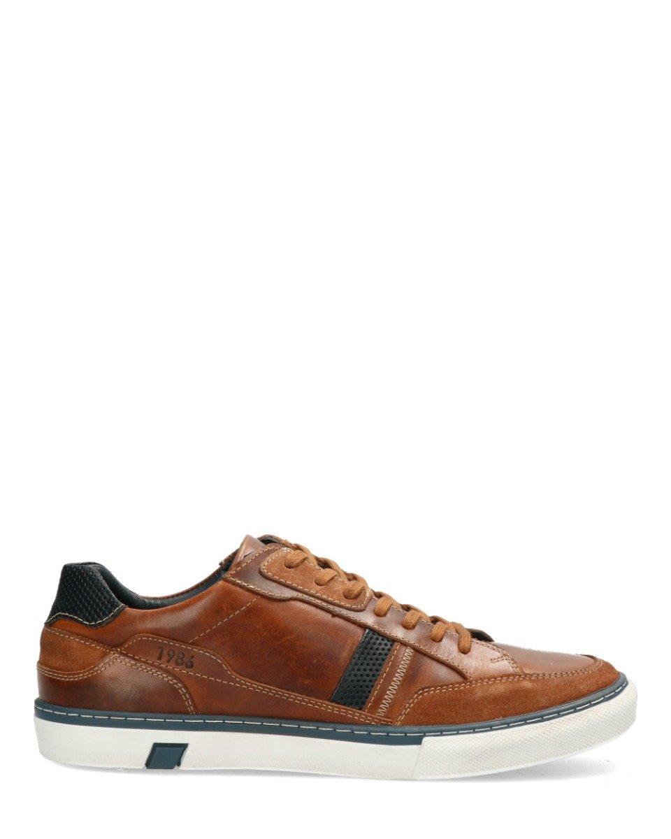 Sneaker Fortune Bruin/Blauw